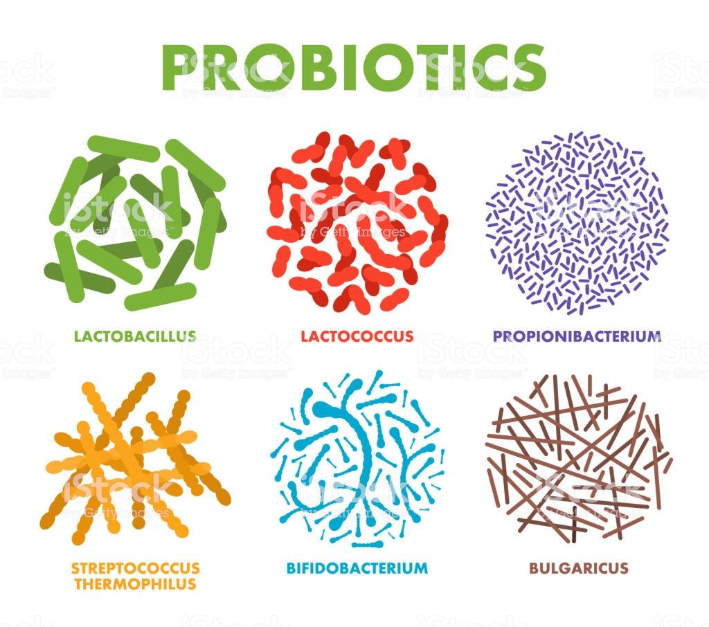 Proizvodi s probioticima
